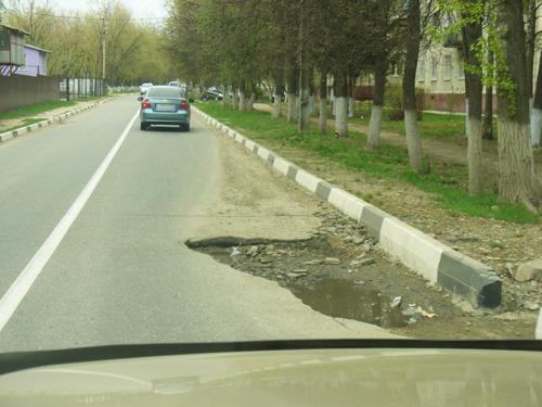 Живность на дороге - всё о ремонте Лада