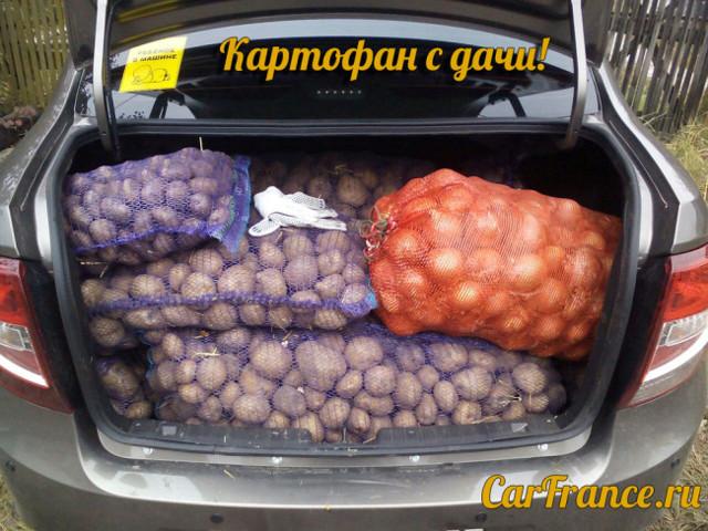 lada granta и kalina снова на украинском рынке - всё о ремонте Лада