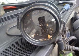 Профилактика датчика массового расхода воздуха - всё о ремонте Лада